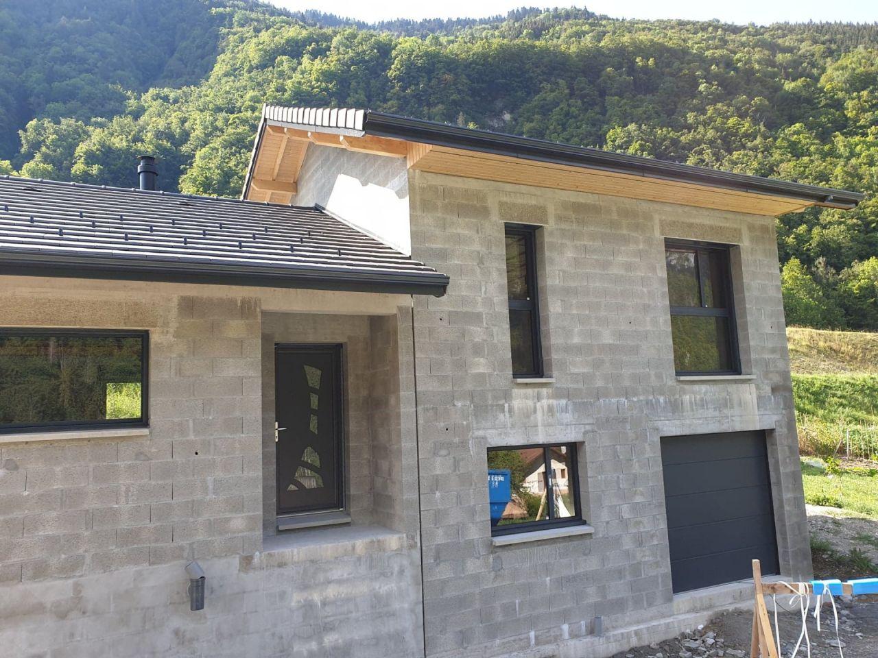 fenêtres, porte d'entrée et porte garage