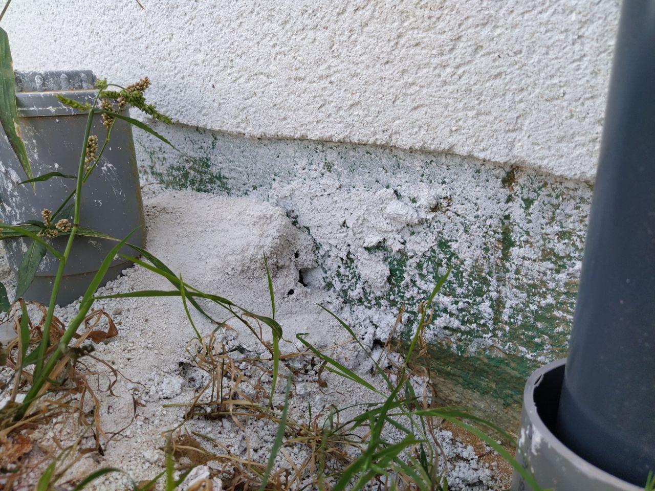 Un peu de gris, un peu de blanc, un peu de vert sur les soubassements. Le CDT ne semble pas préoccupé par la propreté du chantier