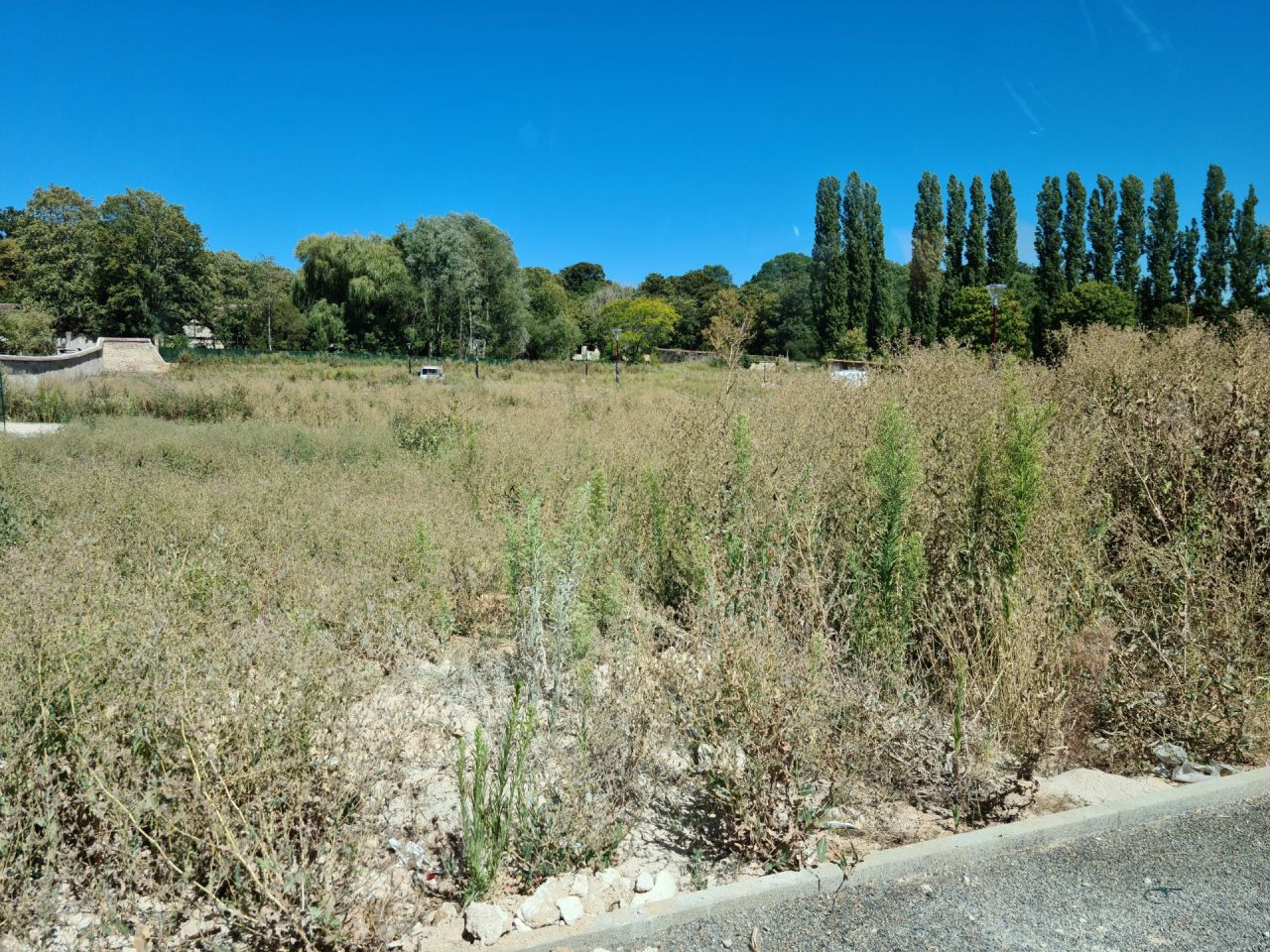 Terrain en herbe