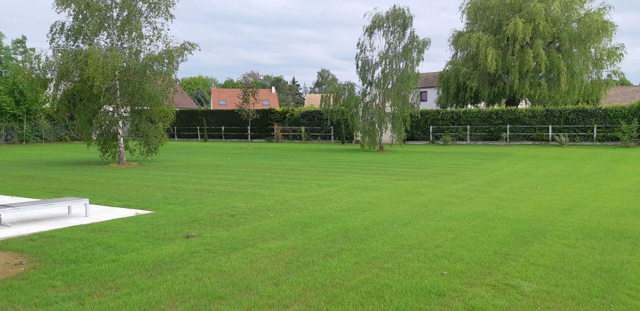 Une vraie pelouse ;)