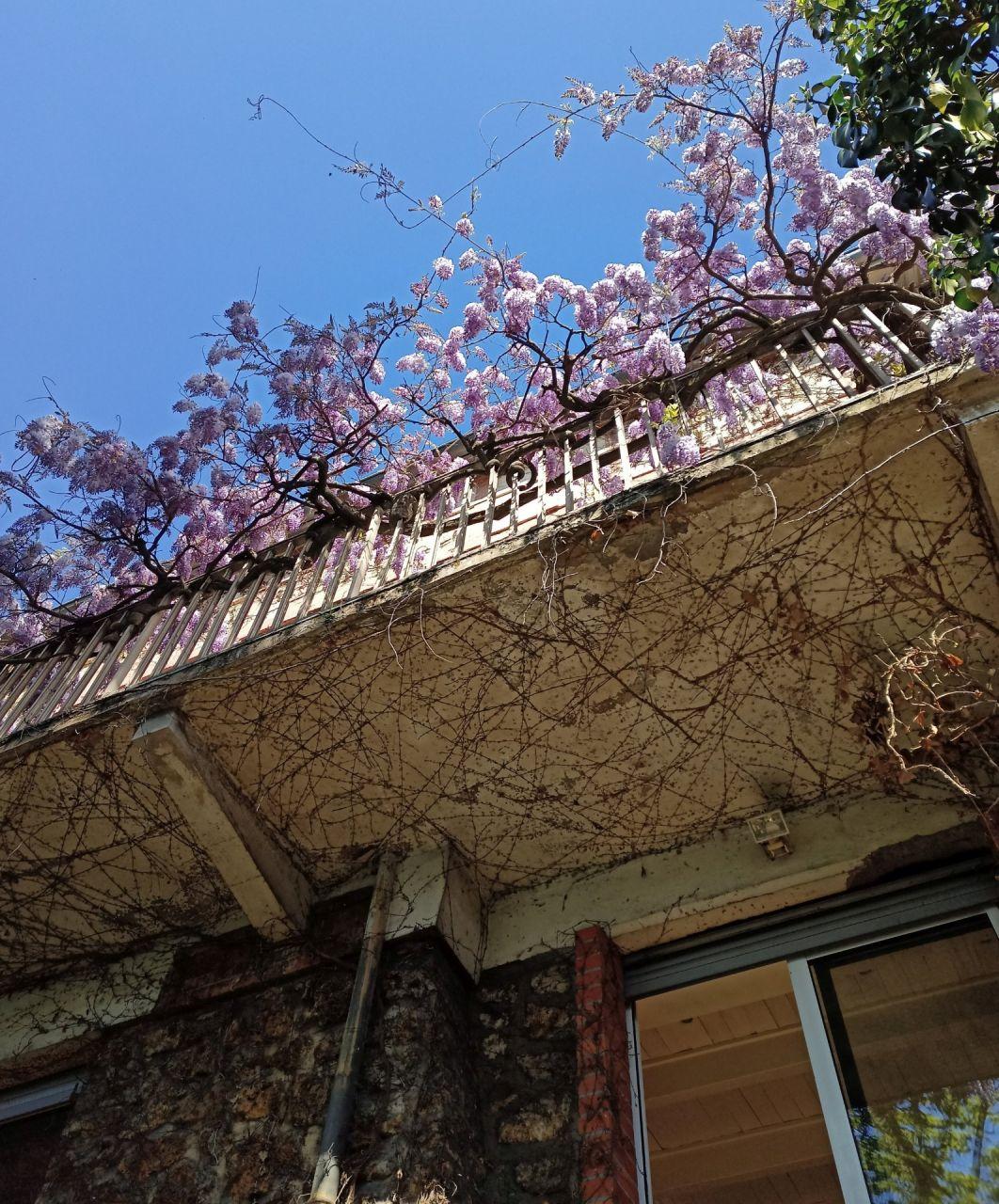 Un balcon en béton lie la partie historique et l'extension de 1953 (légèrement en retrait)