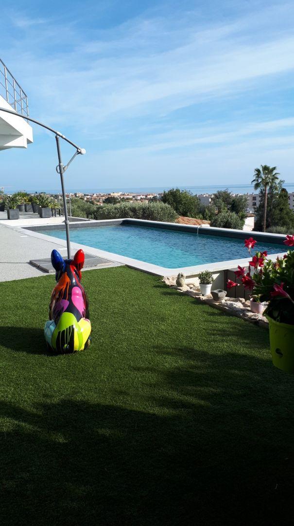 Côté Ouest, pelouse synthétique, mon chien en céramique regarde la mer, l'avantage c'est qu'il ne coûte pas cher en entretien !