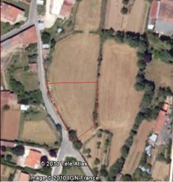 Vue de notre terrain (délimité grosso modo en rouge. Il sera borné la 1ere semaine de Janvier 2011, normalement.