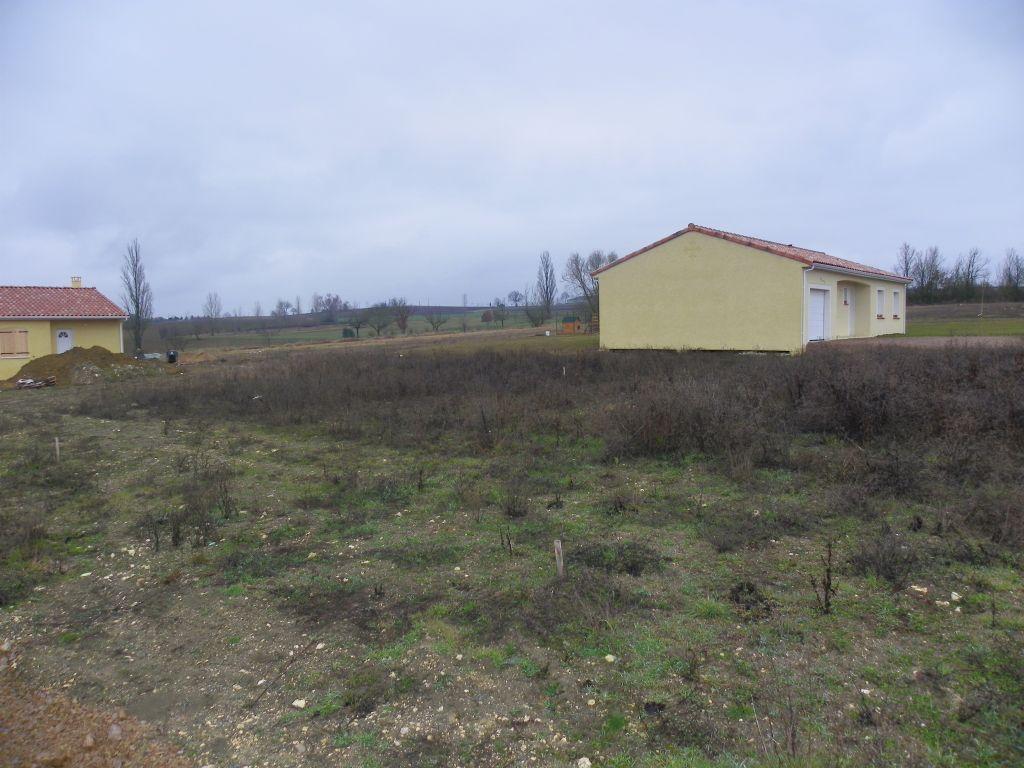 Voilà le terrain ou sera construit la maison ^^ <br /> Je me demande si je vais devoir aller le débroussailler :p