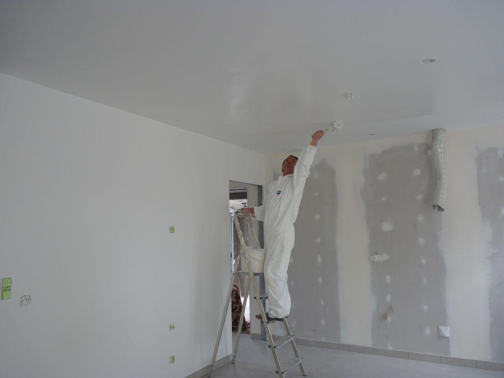 Avancement de la peinture st sebastien sur loire loire atlantique for Retouche peinture plafond