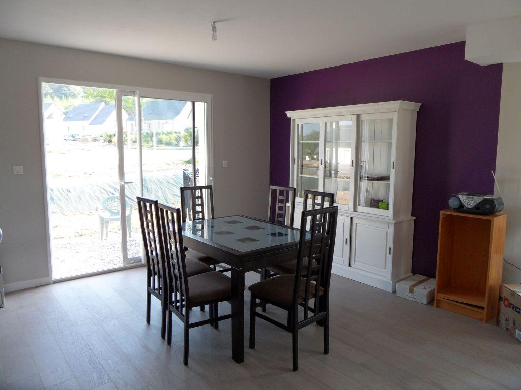 Peinture grise et violet pour salon s jour cuisisne for Peinture dans salon