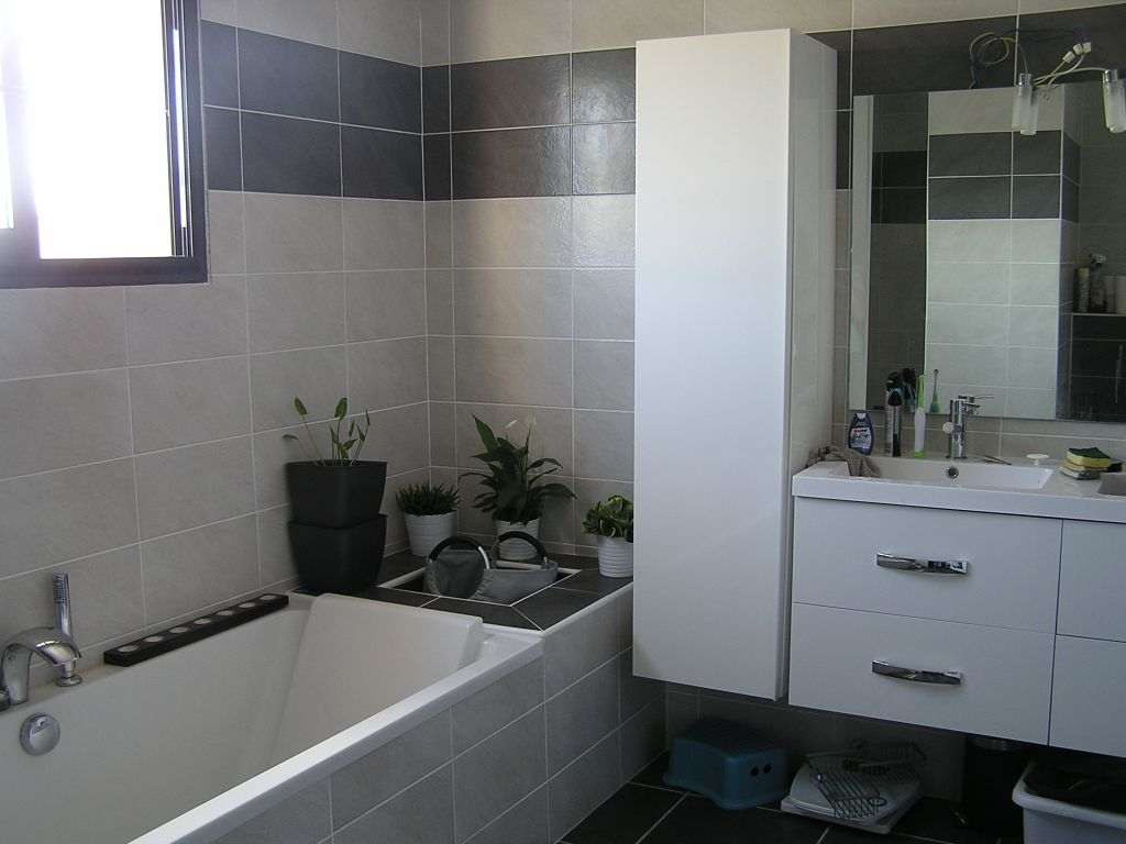 Salle de bain - salle d'eau 9.5m2 teintes murales grises - Bages (Pyrenees Orientales - 66) - aout 2011