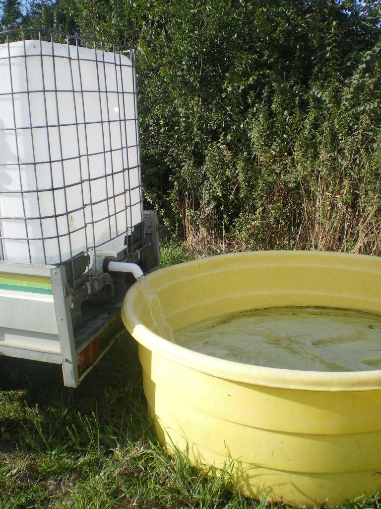 Installation de l'eau sur le terrain en attendant d'avoir l'eau courante...