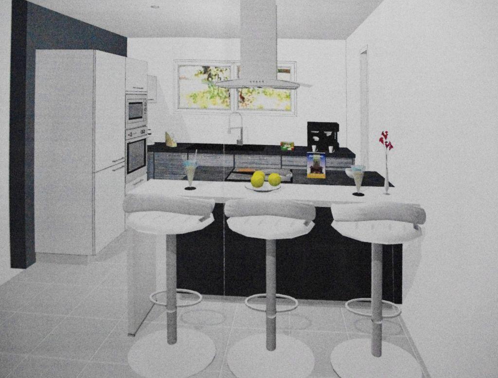 La cuisine terrassement sierentz haut rhin for Cuisine 101 incorporated