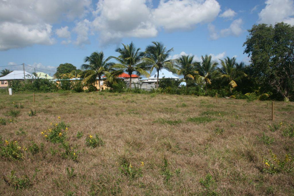 Le terrain (tout à gauche de la photo le petit rectangle blanc c'est le panneau du constructeur)
