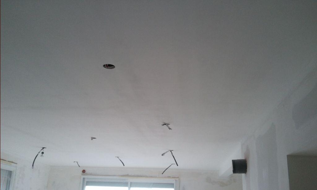 Peinture d'un des nombreux plafonds