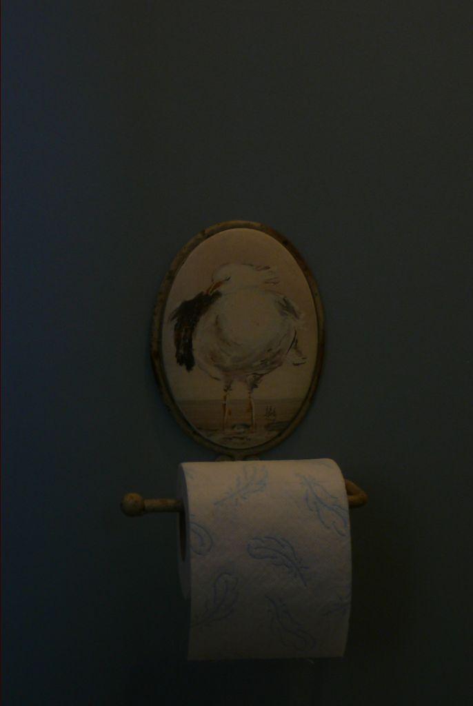 Installation dérouleur papier WC