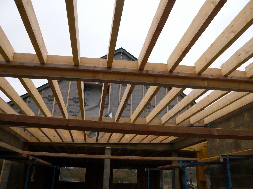 Charpente Bois Toit Plat : 18 36 06 charpente toiture vegetale gros oeuvre charpente couverture