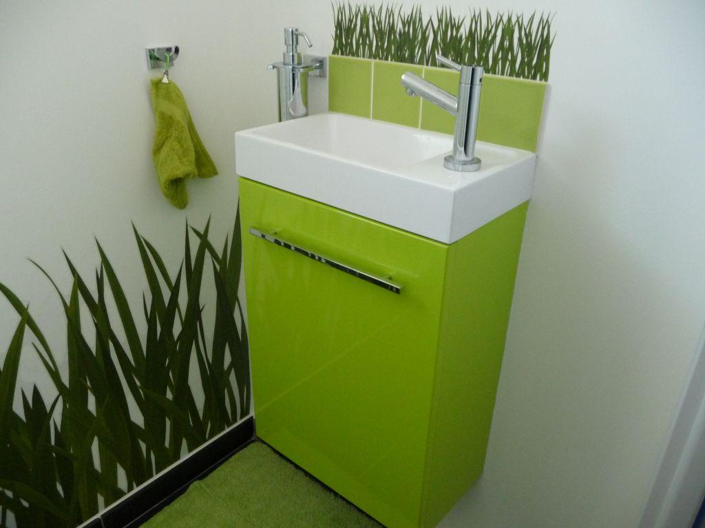 WC revêtement peinture - Auch (Gers - 32) - mars 2012