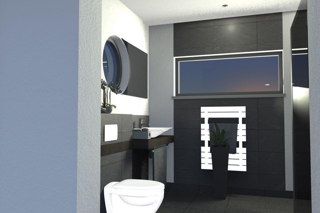Toilette / SDE / buanderie