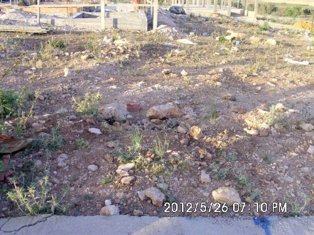 Terrain avant terrassement
