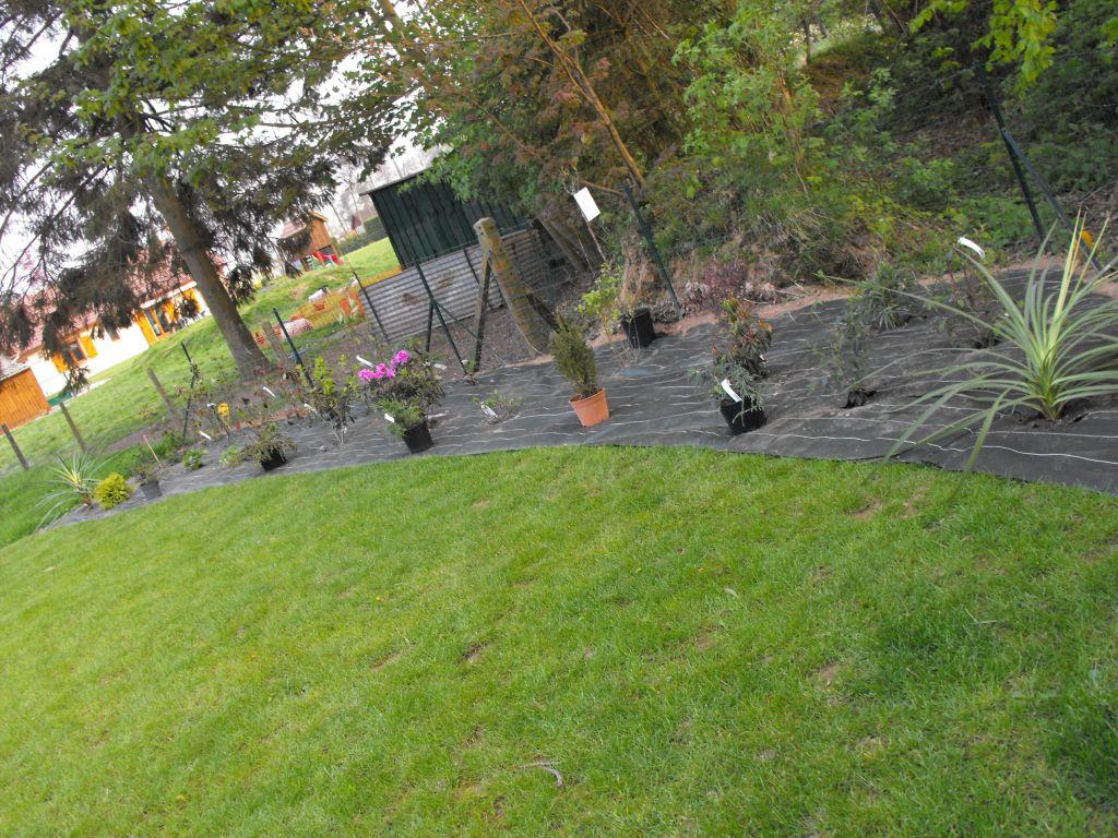 Déco jardin suite