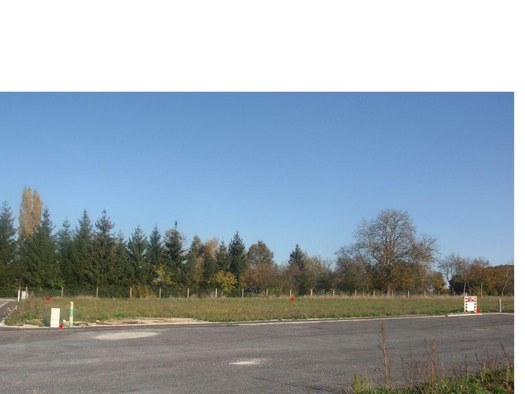 Terrain, bornage en rouge,  au 25/10/12, la veille de la signature de l'acte de vente.