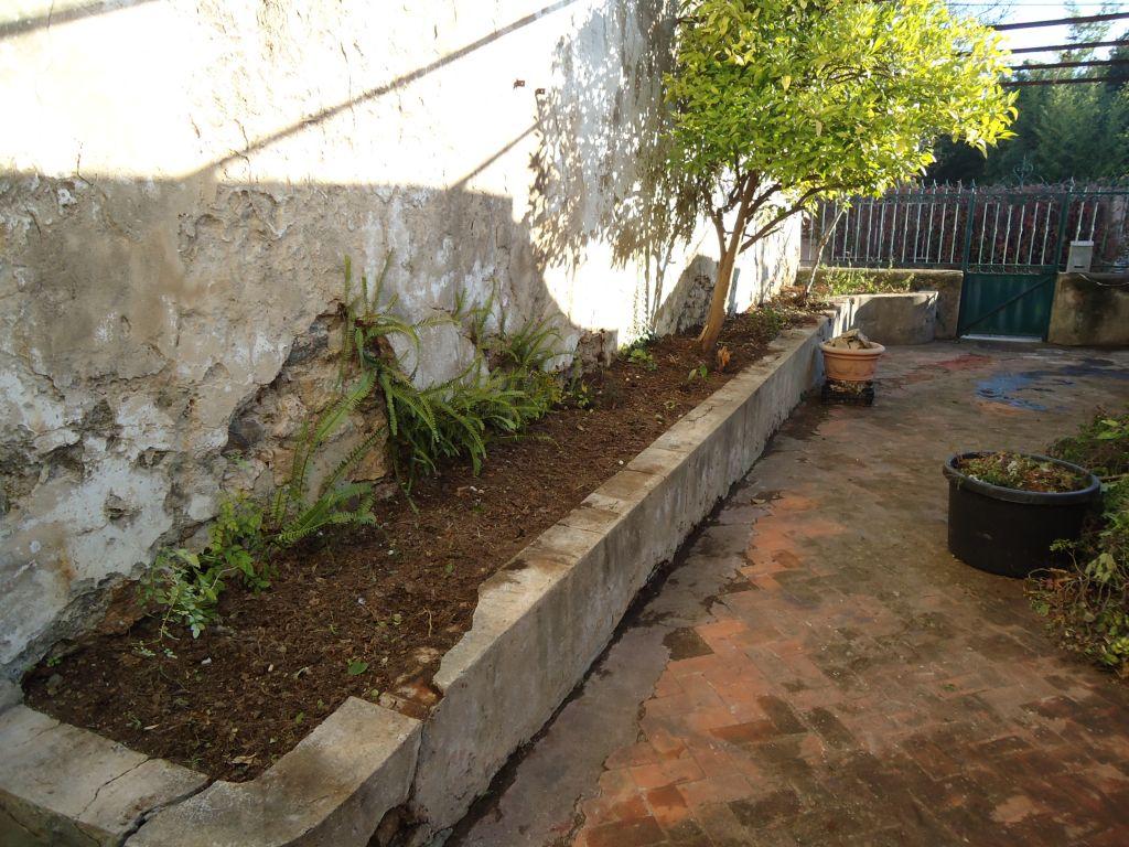 Débroussaillage du côté gauche de notre terrasse, nous souhaitons y planter que des végétaux de type méditerranéens.