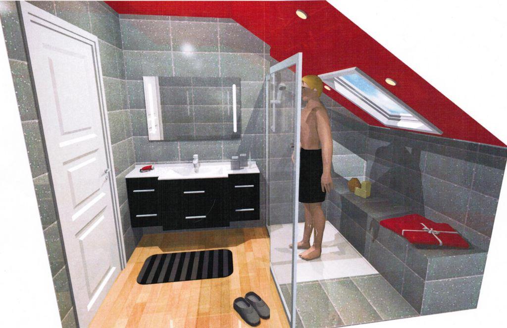 Chemin e notre future salle de bain suite et fin r union technique scientrier haute savoie for Petite salle de douche moderne