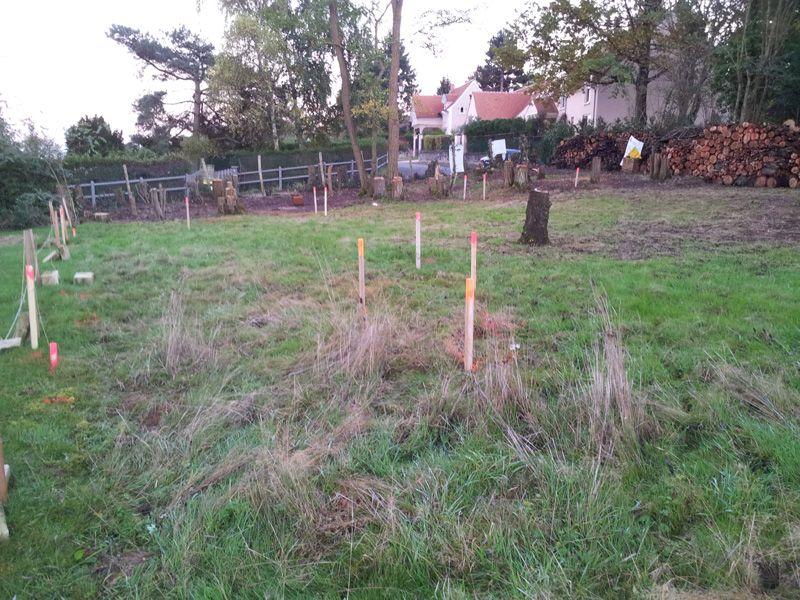 Marquage du terrain par des piquets pour le terrassement