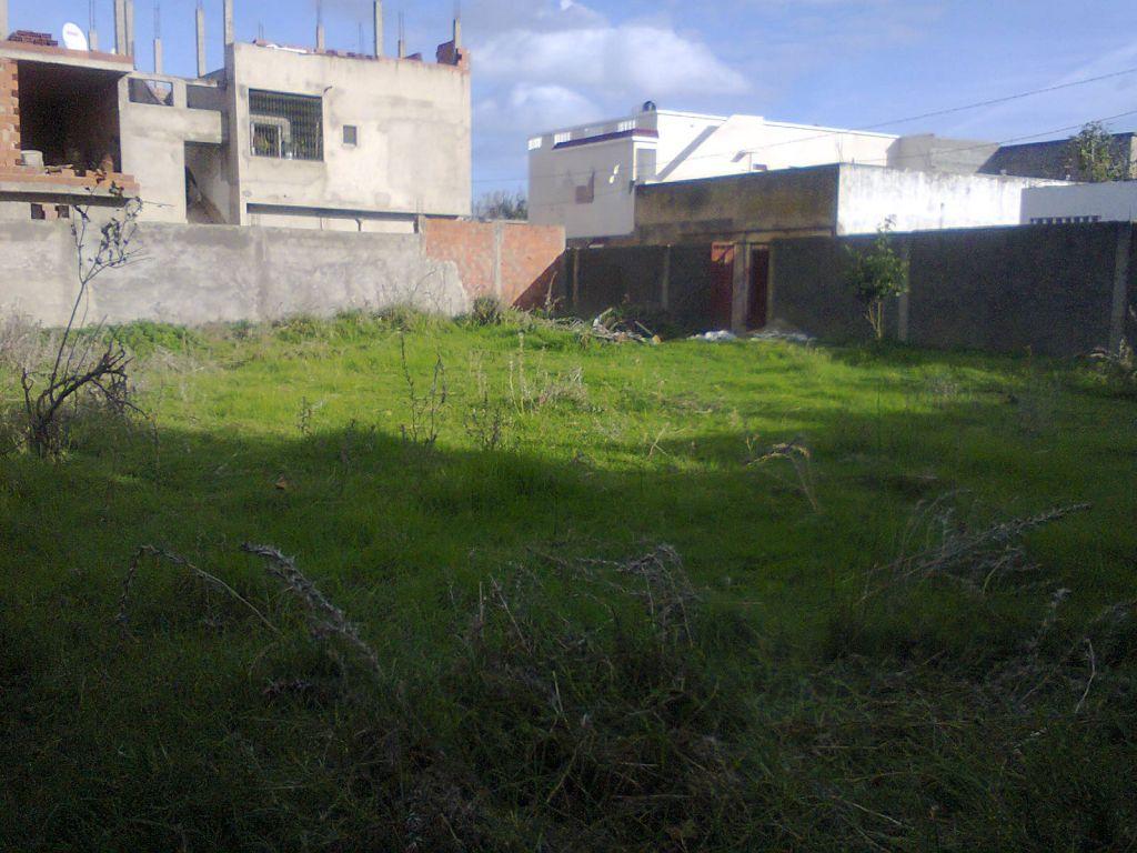 Besoin de d couvrir le sol de mon nouveau terrain 7 messages for Construire une maison sur un terrain agricole