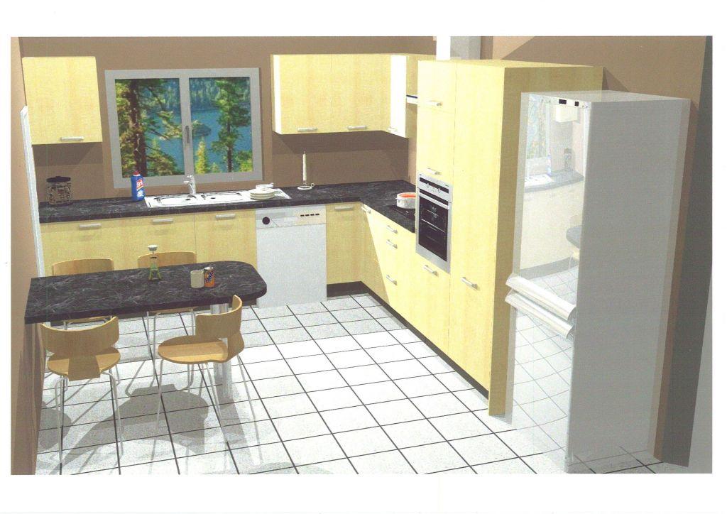 Notre projet de cuisine IXINA - 12 messages