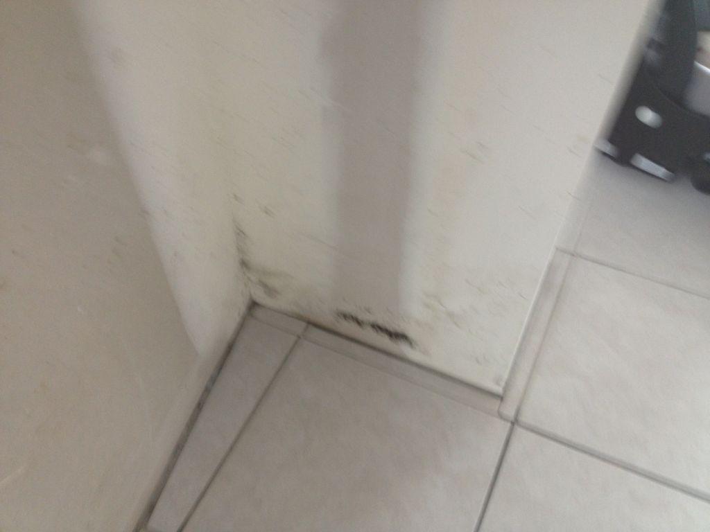 Moisissure dans le séjour au niveau du mur porteur
