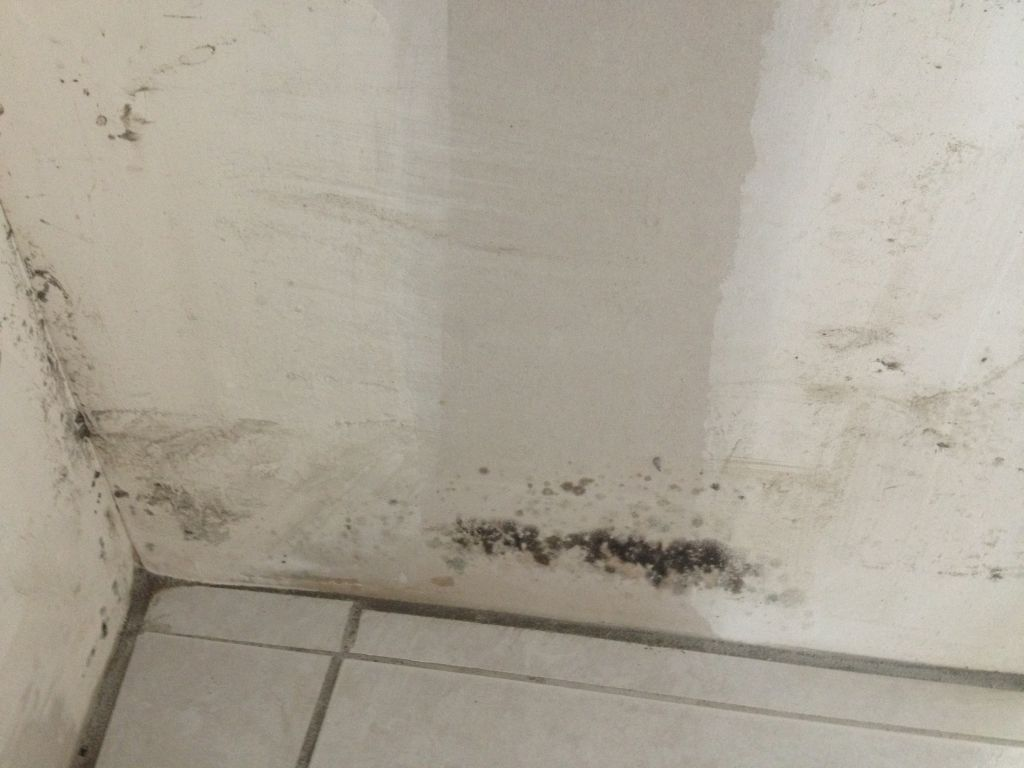 Moisissure au niveau du mur porteur