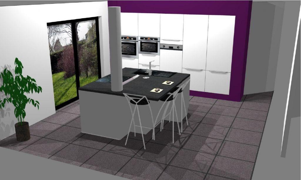 Avis electro hotte plafond ou plan de travail 22 messages - Avis sur cuisine ixina ...