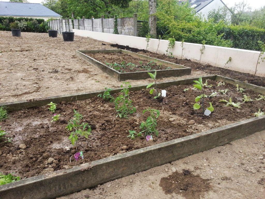 Jardin potager les jardiniers de l 39 extr me audience for Jardin potager 78
