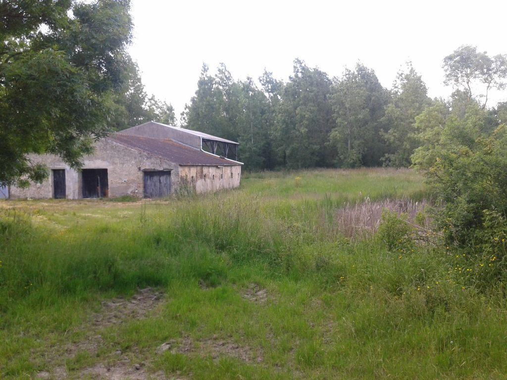 Vue de la grange avant travaux, pignon Sud