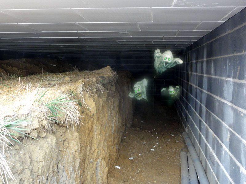 Vue de la cave