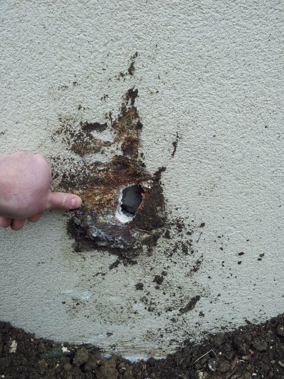 trou dans mur neuf suite chute de souche d'érable