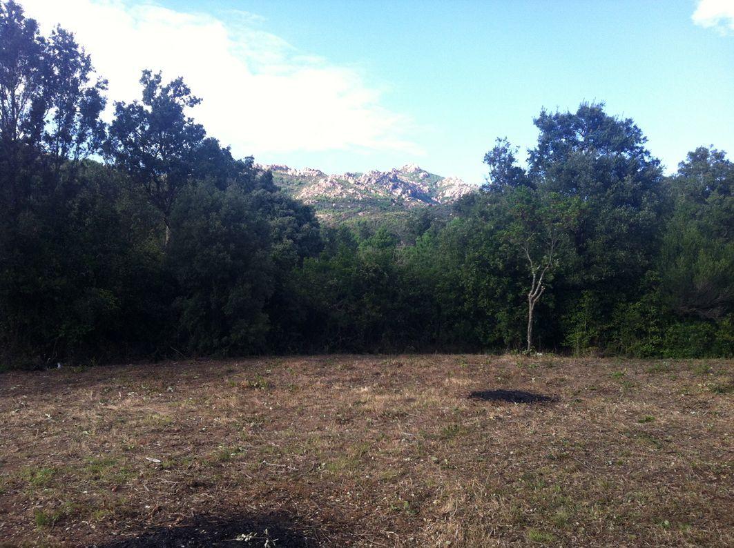 Et la vue sur le massif de l'Ospédale est enfin dégagée
