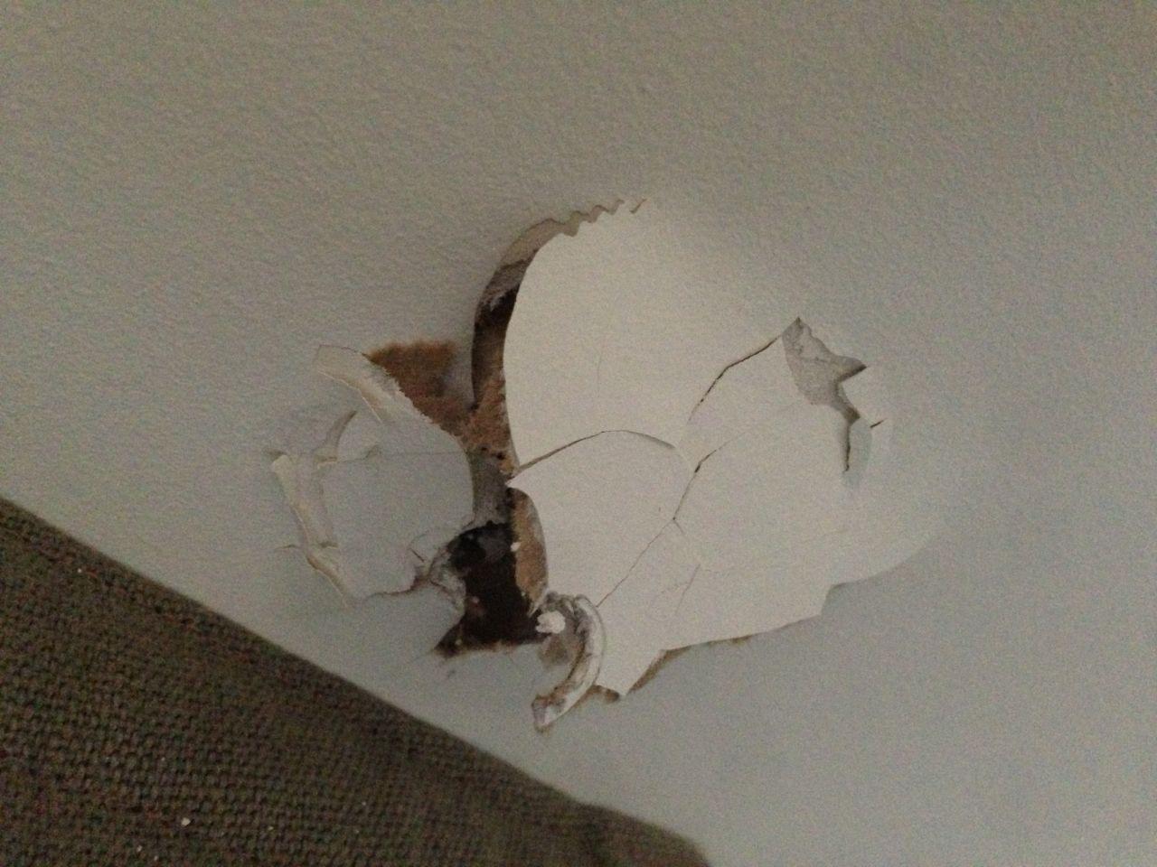 Réparer Un Plafond En Platre à réparer plaque faux-plafond arrachée - 10 messages