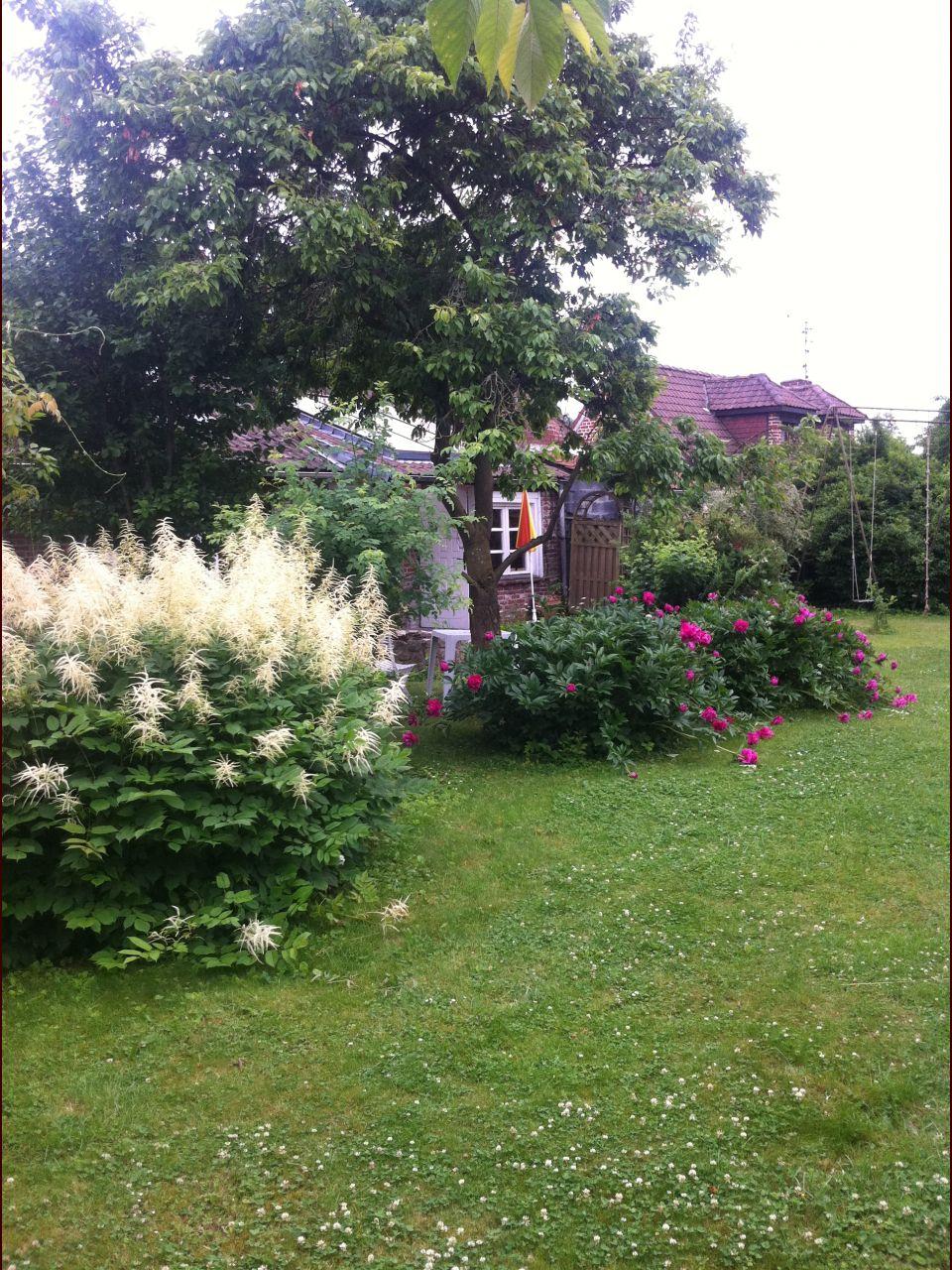 Le jardin, on est tombés sous le charme