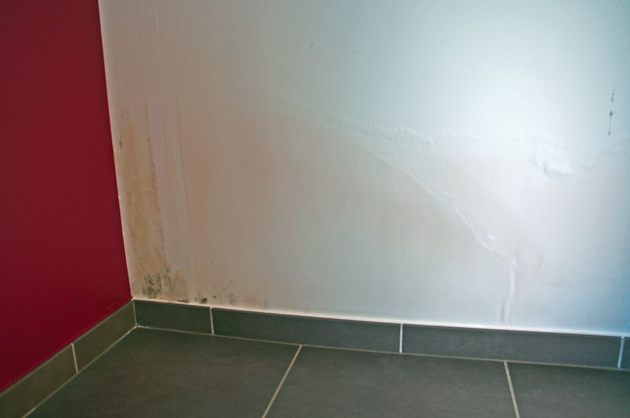 Humidit sur murs d 39 une maison neuve 20 messages - Trace humidite sur mur ...