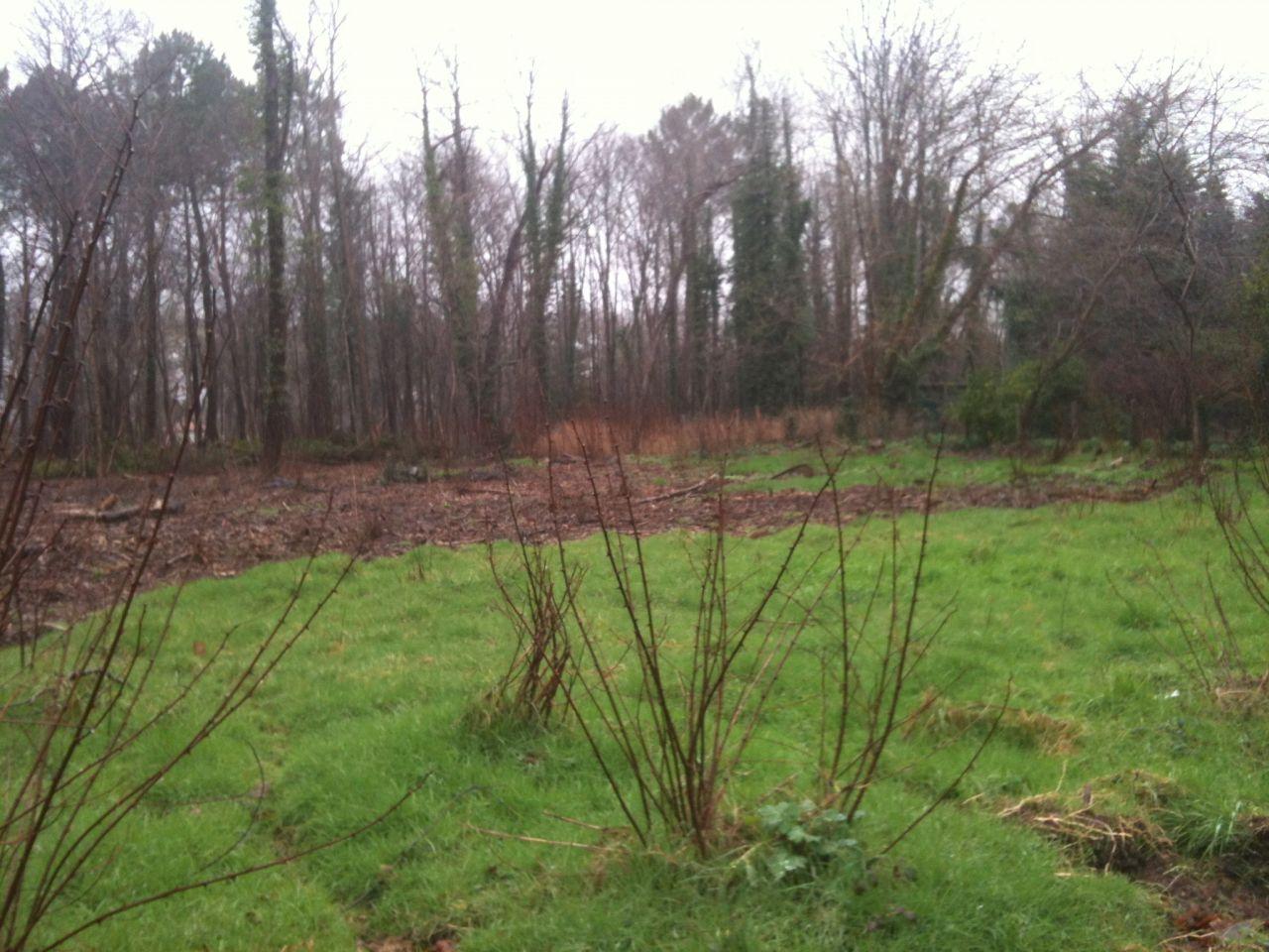Notre terrain à Pontenx-Les-Forges <br /> 1500 m2 <br /> non viabilisé et pas d?accès au tout à l'égout