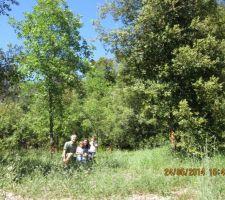 Dernière photo avec le terrain tel qu'on l'a acheté. Lundi commence l'abattage des arbres.