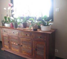 J'ai enfin trouver le meuble qui convient à mes orchidées (lol), juste bien sous la fenêtre, en hauteur parfait ! Je suis trop contente ! (meuble bois et chiffon) !!