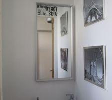 Le miroir des WC est posé