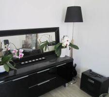 Les orchidées de maman en pension