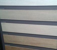 Le carrelage de la maison .Imitation bois clair (celui du milieu)