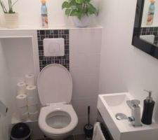 Toilettes en fonction lol