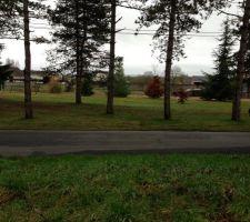 Donc voila notre terrain  nous avons signé le 22 juillet, il y a 9 pins dessus nous devons les abattes pour y implanter la maison.
