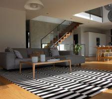 le nouveau tapis du salon