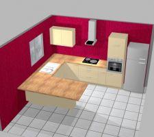 L'implantation et le modèle de notre cuisine :) Pour les couleurs, c'est le cuisiniste qui a mis ça ! Pour le sol: surement carrelage imitation parquet foncé (on ferait la crédence pareil) Le mur de la hotte, surement rouge (pas celui-ci)ainsi que celui de droite (qu'on ne voit pas). Et celui de gauche, taupe (comme la salle). Pour le plan de travail, il est stratifié imitation chêne. Vous en pensez quoi ? pas facile de se projeter !!