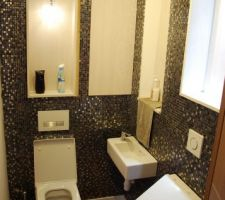 toilettes pour invites finition en cours