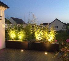 Jardinières avec éclairage terminées